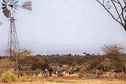 Africa7-sm